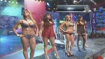 Chicas de Combate en sexy lencera
