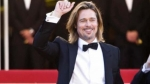 Brad Pitt se vacil rico en despedida de soltero