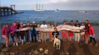 EE.UU.: Hallan una gigantesca serpiente marina - Noticias de mark waddington